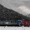 辞意でも沁みない、ナゲーのフーケー 中途半端な雪景色・東海道本線