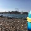 【浜松のオススメスポット】浜名湖・ガーデンパーク