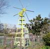 いたすけ古墳のタヌキ&大仙公園の風車と桜【大阪府堺市】