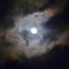 【画像多め】睡眠と夜空 シラサギに驚きの新展開!