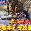 【星ドラ】魔竜ネドラの最適攻略法とは?緊急襲来イベント第一弾のクイック準備をしていく【ドラクエ11×星のドラゴンクエスト】