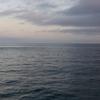 オフショアブリジギングからの沼前岬