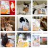 皆さんの猫さん写真と本の画像をInstagramに投稿しています!! 2020年12月14日までの掲載分&猫さん小説の依頼をお待ちしております!!