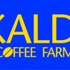 【 カルディ 】 コーヒーと輸入食品で有名なアノお店がセールだって!