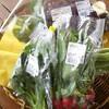 新鮮な野菜は地元から