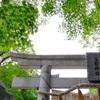 17.東京 多摩川浅間神社