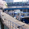 YOKOHAMAの春
