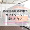 小田原鈴廣かまぼこの里「cafe107」で箱根登山鉄道を子どもと満喫♡