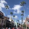 ハリウッドスタジオのファストパス・プラスは何を取る?キャラクターダイニングも予約しました!