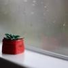 ポリマー粘土で作ったかわいいキーキャップ - Tiny succulent Keycap!