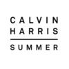 Calvin Harris - Summerの歌詞 和訳