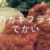 上野の隠れ家フレンチ居酒屋『Enn(えん)』のランチは高コスパ!