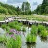 ひょうたん池(新潟県長岡)