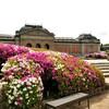 【京都】『京都国立博物館』「鑑真和上と戒律のあゆみ」展に行ってきました。京都花 ツツジ 京都観光