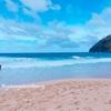 入社して3ケ月目の新人研修担当#ハワイ留学