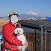 【日帰り旅行】雪化粧の富士山を望みながら ~リベンジ!やっぱり富士山は雪が似合う~