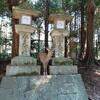 奈良県にある春日大社に行ってきました。鹿との触れ合いも出来て人気のあるスポットにでした。