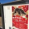 【本以外】上野で松林図屏風をみてきました