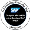 「SAP TechEd Learning Room 2018」でデジタルバッジをGETしました