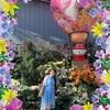 シンガポール旅行記♪2019♪ ガーデンズバイザベイ フラワードーム♪