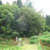 小倉山城跡の史跡指定