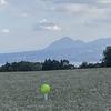 ゴルフは健康維持の効果はあるか?