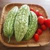 夏休みのお昼ご飯に役立つ食材2つ!庭のお野菜も絶好調!