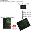 多数の実験画像における類似性や不適切なデータ処理