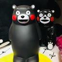 UFOキャッチャー 景品紹介&価格公開 熊の金持ちブログ