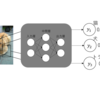 【初心者向け】ニューラルネットワークのソフトマックス関数とは?【連載⑤】