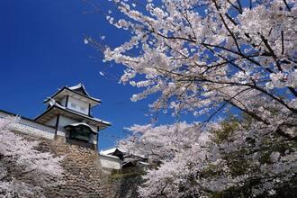 2018年4月7日に「金沢城きもの園遊会」開催!「和」をテーマにした着物の祭典が開かれる!