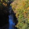 手取峡谷の紅葉「不老橋」