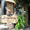 'ベトナムの人気観光地が違っていた行く'ダラット市内の奇怪で不思議な家'クレージーハウス'