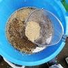 種籾のバカ苗病予防は温湯消毒が安心。