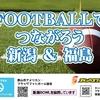 新潟BOWL(10/28)でアメフト&フラッグフットボール体験会