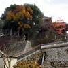 竹原の屋根の上
