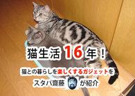 猫生活16年。愛する猫との生活が最高になるガジェットたちを、スタパ齋藤が紹介