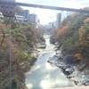 鬼怒川で紅葉の代わりに「イノベーションのジレンマ」を見た