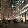 honor 8とGalaxy S6 edgeで東京を撮って比較!