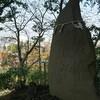 安行の御嶽山…