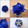 キリッと端正な青いバラ 〜ニューモダンローズ×ROYAL BLUE〜