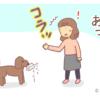『駆けつける』【キャバリア・トイプードル4コマ】