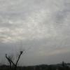 20140515朝の空