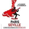 """マヌーシュ・ジャズとフラメンコ音楽の魅力を伝えてくれるステージ、 Raphaël Faÿsの""""Paris-Seville"""""""