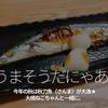254食目「うまそうだにゃあ。」今年の秋は秋刀魚(さんま)が大漁★大根ねこちゃんと一緒に。