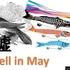 セル・イン・メイ(Sell in May)は嘘!信じたら大損。いったい何を売るの?