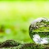 【SDGs】東洋紡 2050年までにバイオマスプラスチック比率100%へ