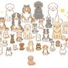 【犬イラスト】お友達犬、犬種別頭数ランキング