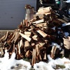 防風薪壁を更新 生存確認(笑)  Renewing firewood wall for windproof