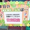 野菜いっぱいロールキャベツ&こんにゃくのサラダ ~のり子先生の食育教室~